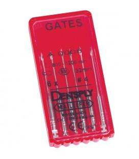 FORET GATES Nº3 28 mm
